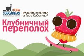 Фестиваль клубники на Горе Соболиной