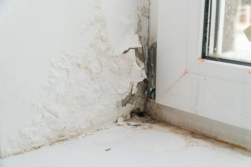 Фотография сделана в доме для детей-сирот в Ангарске