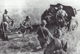 Между нацистским молотом и японской наковальней: война на Халхин-Голе