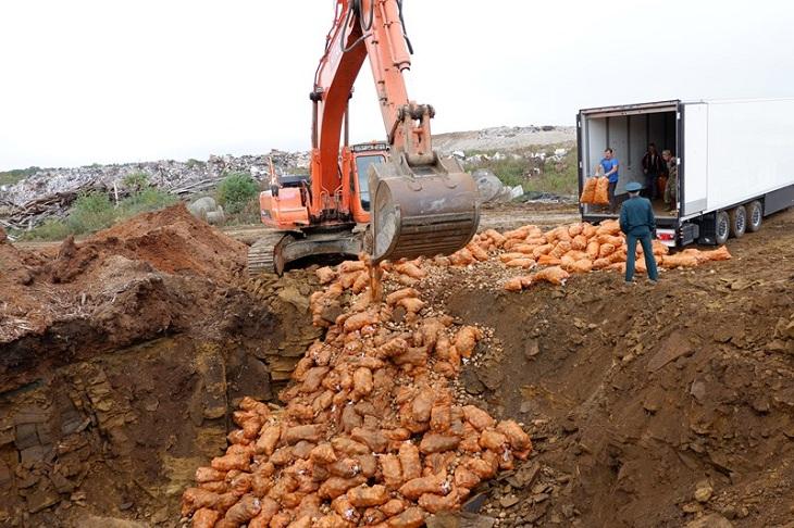 Фото пресс-службы россельхознадзора по Иркутской области и Республике Бурятия