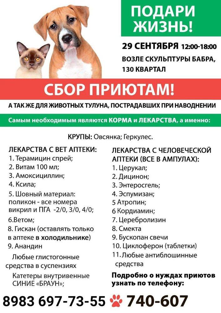 Изображение организаторов