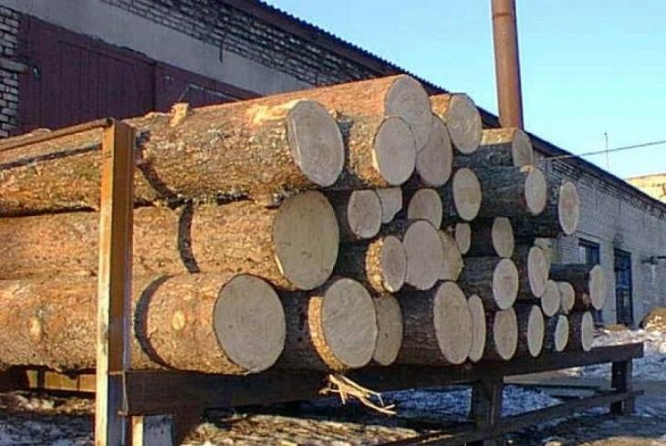 Фото с сайта vrubcovske.ru