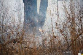 Автор фото — Юрий Новиков