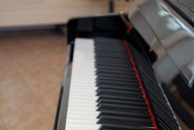 Фото с сайта www.harmonica-tula.ru