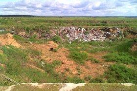 Фото пресс-службы Управления Россельхознадзора по Иркутской области и Бурятия