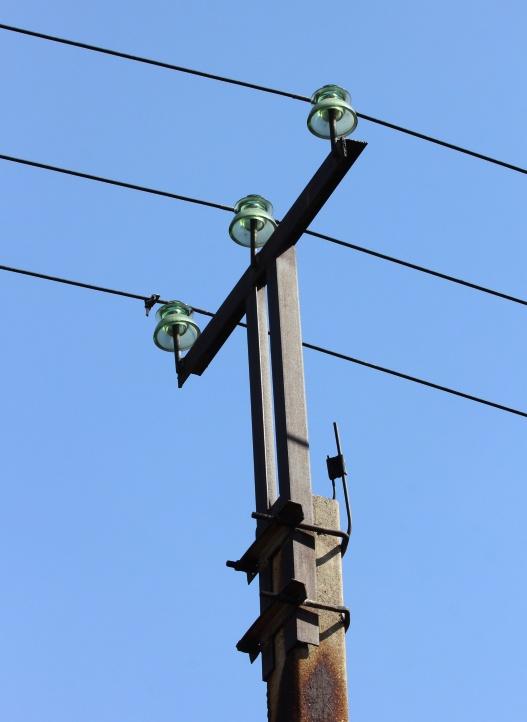 Вот так выглядят столбы, опасные для птиц