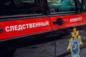 Фото izvestiaur.ru