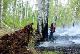 Пять лесных пожаров потушили в Иркутской области за сутки