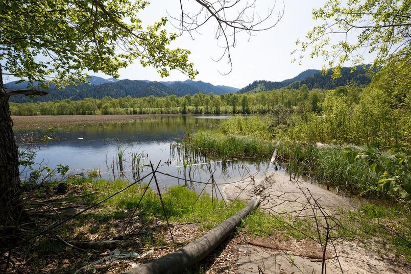 Сразу после запуска комбината власти обратили внимание на экологию Байкала