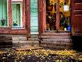 Осень 2017 года. Автор фото — Зарина Весна
