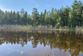 12-летний мальчик утонул при купании в Черемховском районе