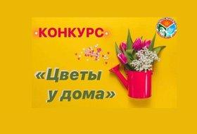 Конкурс «Цветы у дома» в Свердловском округе