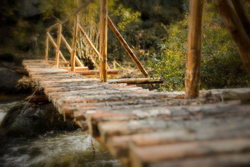 Заблудиться по дороге к скальнику Витязь тяжело, главное — не сворачивать с тропы в лес
