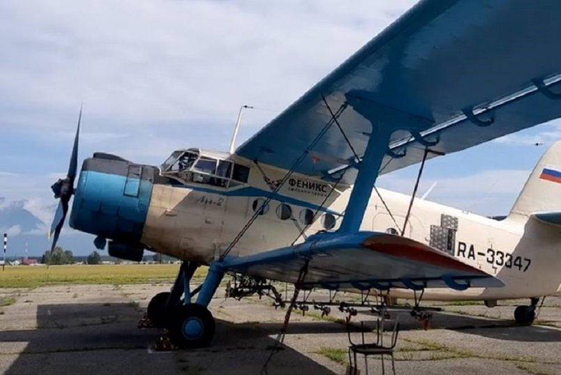 Самолет Ан-2 авиакомпании «Феникс»