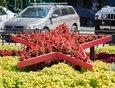 В сквере на пересечении улиц Ленина и Горького также установили цветники в виде пятиконечных звезд.