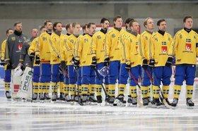 Команда Швеции. Фото с сайта facebook.com