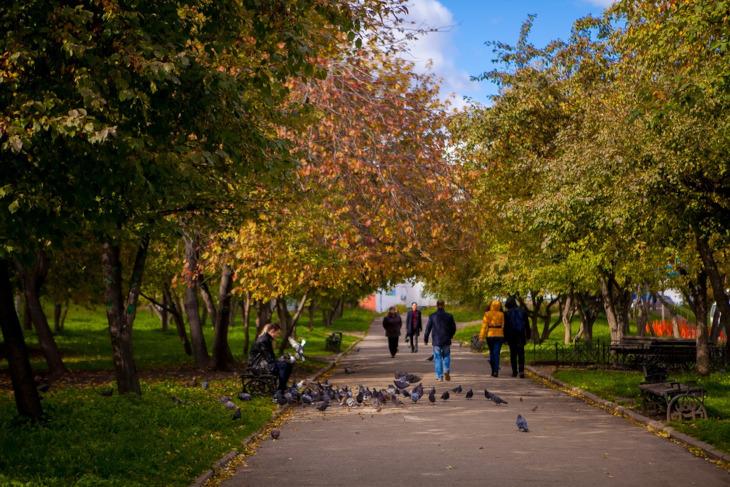 сочные южные ботанический сад в иркутске фото сейчас какое