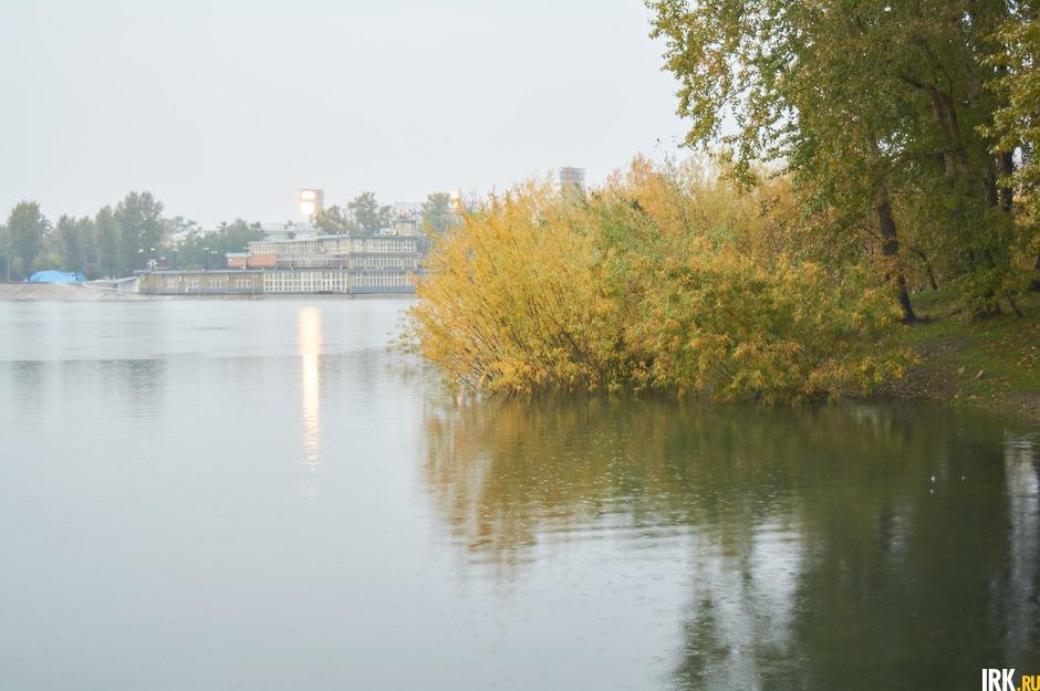 Повышение уровня воды можно заметить по деревьям и кустарникам.