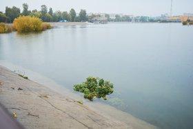 Повышение уровня воды в Ангаре в Иркутске. Фото Маргариты Романовой, IRK.ru
