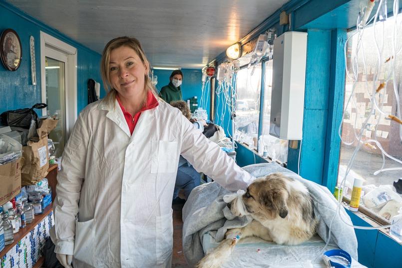 Олеся Гусь, ветеринар питомника К-9