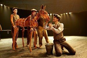 TheatreHD. Боевой конь