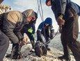 В ноябре волонтеры вытащили 54 тонны мусора со дна Байкала.