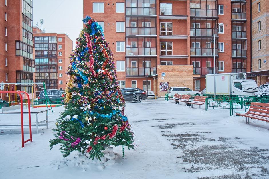 Вот такую красавицу нарядили во дворе домов №№ 12/2, 12/3 и 12/5 по Юрия Тена.