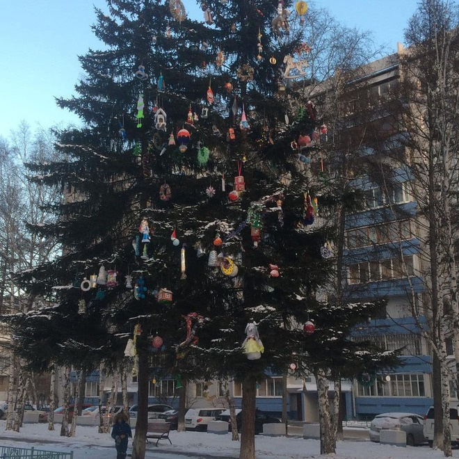 Во дворе дома № 247 в микрорайоне Байкальский украсили самодельными игрушками живое дерево. Кажется, здесь не обошлось без автовышки. Фото предоставлено Верой М.