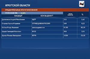 Предварительные итоги голосования жителей Иркутской области на выборах главы региона