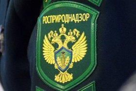 Эмблема Росприроднадзора. Фото пресс-службы Росприроднадзора