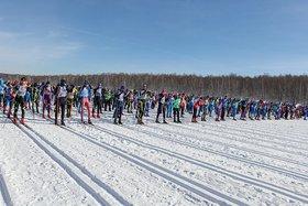 «Лыжня России». Фото из архива IRK.ru