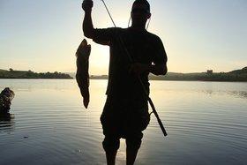 Запрет на лов рыбы установили в Иркутской области