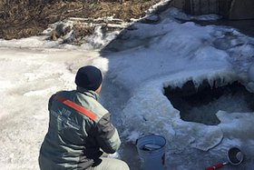 Росприроднадзор проводит внеплановую проверку «Усольского свинокомплекса» после загрязнения рек
