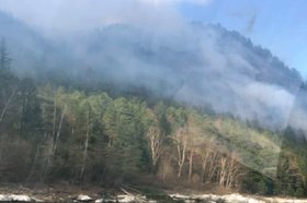 Иркутянин предстанет перед судом за пожар на 80 гектарах леса из-за брошенного окурка