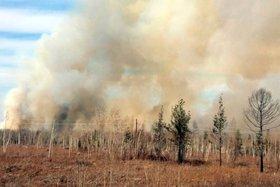 Высокую пожарную опасность прогнозируют в Иркутской области в середине мая