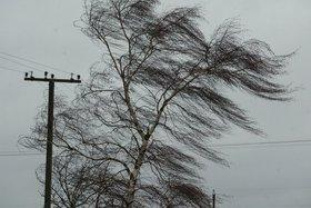Ветер до 20 метров в секунду прогнозируют в Иркутской области 14апреля