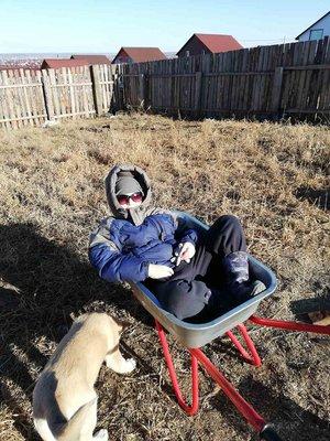 Сяду на карету и уеду в лето…. Но пока май приходится довольствоваться огородом и телегой…
