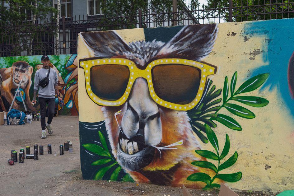 Граффити в Студгородке. Художники создают «пустыню»