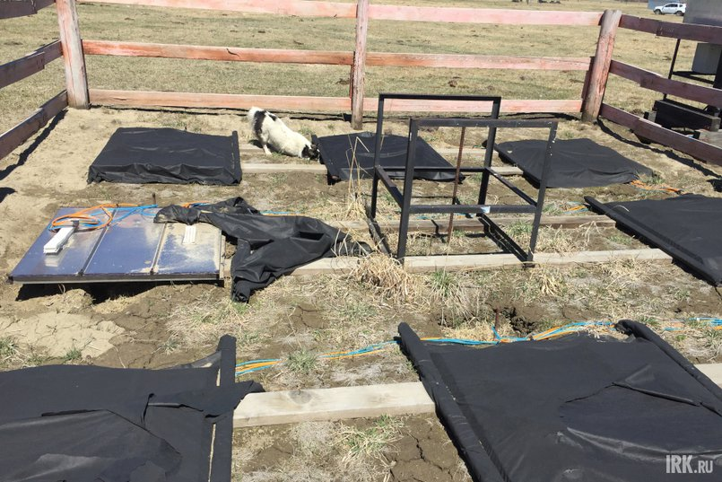 Для оборудования угрозу представляют собаки и коровы, а не посторонние люди