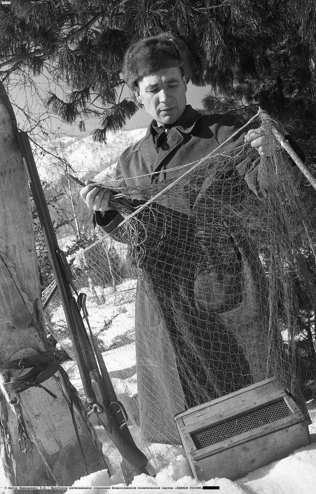 Охотник-соболятник Семён Тыклин на отлове зверьков. фот. Э. Д. Брюханенко. , 1956.