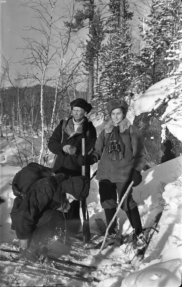 Студенты охотоведы на практике в тайге. фот. Э. Д. Брюханенко. -  1956.