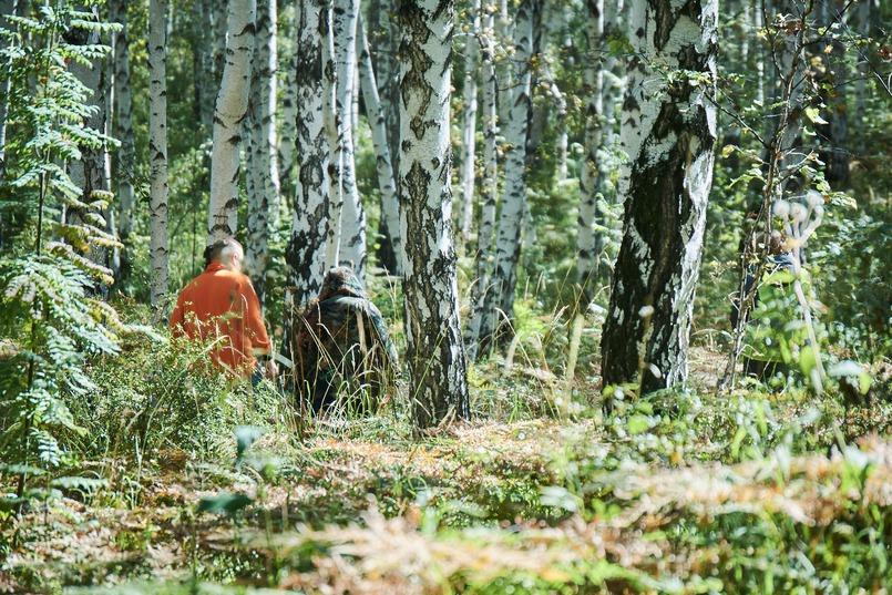 Перед тем, как пойдете в лес, обязательно предупредите родственников