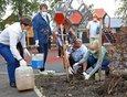 В сквере жители высадили деревья.