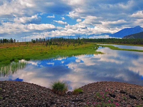 Природа Байкала. Фото из архива «Байкальские приключения»