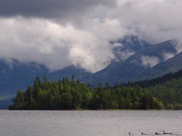 На озере. Фото с сайта www.nature.baikal.ru. Автор фото — Андрей Веретенников