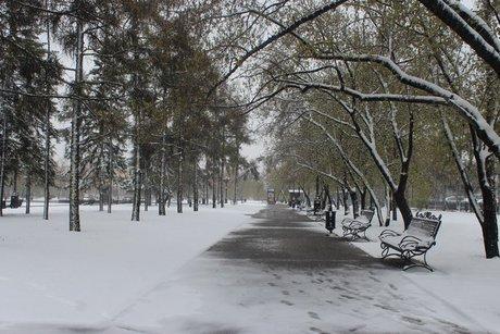 В Иркутске. Фото ИА «Иркутск онлайн»