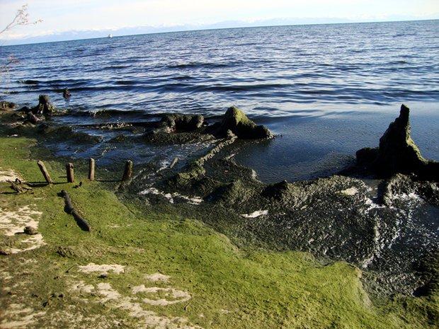 Фрагмент побережья возле бухты Сеногда