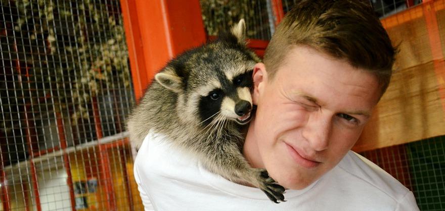 Фото предоставлено «Сибирским зоопарком»