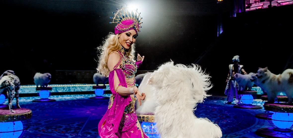 «Песчаная сказка» в иркутском цирке: в чем волшебство шоу Гии Эрадзе?
