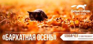 Где отдохнуть на Байкале в бархатный сезон?
